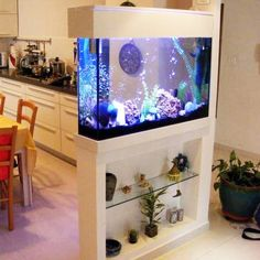 Splendid DIY Aquarium Furniture Ideas To beautify Your Home – CueThat diy aquarium furniture stands are an integral part of every aquatic system. The aquarium stand should be sturdy so that it can bear the weight of a filled a. Diy Aquarium, Aquarium Design, Wall Aquarium, Aquarium Setup, Aquarium Stand, Aquarium Ideas, Living Room Partition Design, Room Partition Designs, Interior Design Living Room