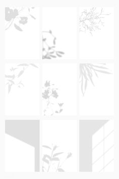 Botanical shadow on white background template vector set | premium image by rawpixel.com / sasi Green Backgrounds, Abstract Backgrounds, White Brick Wallpaper, Window Shadow, Plane Design, Shadow Photography, Photography Templates, High Resolution Wallpapers, Wallpaper Pictures
