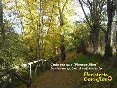 """Cada vez que """"Piensas Bien"""" Le das un golpe al sufrimiento. Floristería Correflor. 91 695 62 71"""