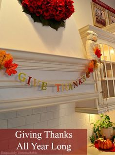 Thanksgiving is a wonderful time to think about gratitude and being grateful for all the good in your life...but why not give thanks all year long? Come check out my thoughts. I'd be grateful!