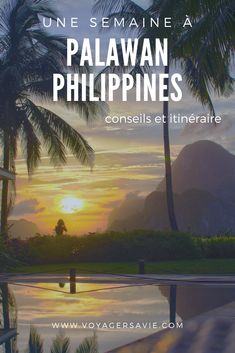 Palawan aux Philippines : que faire à Coron et El Nido Coron, Palawan, Brunei, Laos, Voyage Philippines, Road Trip, Destinations, Blog Voyage, Paradis