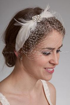 Bridal Birdcage Mini Veil with Feathers Wedding Headband