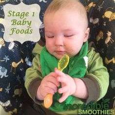 """Making your own baby food in a blender is easy. Not only does it save you money, it's a great way to give your baby the freshest, most nutritious food possible. In this post, I will primarily talk about """"stage 1″ baby foods. These are the types of simple recipes that you make when you …"""