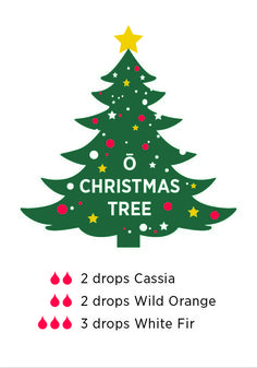 This diffuser blend is sure to fill your home with the scent of Christmas.