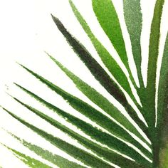 Palm leaf watercolor painting Tropical art Botanical by colorZen
