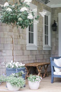 Monika Hibbs | Outdoor Living | http://www.monikahibbs.com