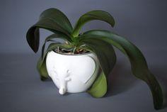 EAST GERMAN Pottery Planter or Vase, VEB Haldensleben 7195, White Elephant Planter, German Plant Pot, West German Pottery, Made in Germany