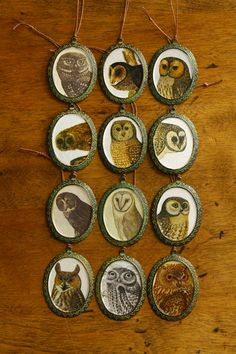 Vintage owl illustration ornaments are now available for sale at the Honest Weight Co-op. These are limited and once they're gone I will most likely start a run with a different animal.