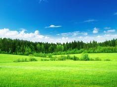 Hut In Open Field Wallpapers) – Live Wallpapers Wallpaper Nature Flowers, Beautiful Landscape Wallpaper, Beautiful Landscapes, Beautiful Photos Of Nature, Nature Photos, Amazing Nature, Pixel Art Background, Dslr Background Images, Field Wallpaper
