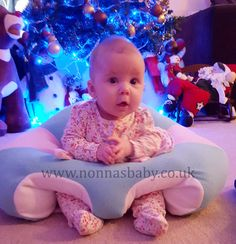 Hugaboo Baby Seat 3 Month Olds