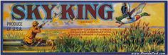 SKY KING CITRUS LABEL - WINTER GARDEN, FLORIDA. What a Beauty!