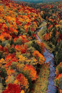 Fotos Incríveis - Travel tips - Travel tour - travel ideas Fall Pictures, Fall Photos, Nature Photos, Beautiful World, Beautiful Places, Autumn Scenes, Autumn Aesthetic, Autumn Photography, Belle Photo