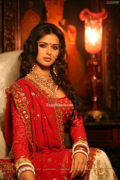 Meenakshi Dikshit High Resolution Portfolio Pictures - Image 4