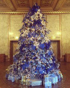 51 best Hanukkah Bush images on Pinterest | Hanukkah bush, Tree ...