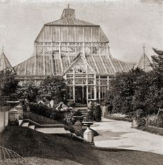Victorian Greenhouse in Southport Half of an amateur's stereoview of a greenhouse in Southport botanical garden. Unknown photographer / around