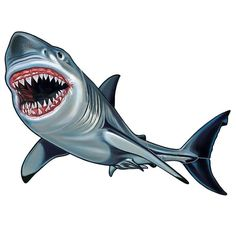 Vibrant colors and exquisite detail are what set our porcelain shark pool mosaics apart from the rest. Our handcrafted shark pool mosaic will add a creative touch to your new or refinished swimming pool. Shark Images, Shark Pictures, Shark Pool, Shark Painting, Swimming Pool Mosaics, Shark Drawing, Shark Art, Shark Tattoos, Megalodon