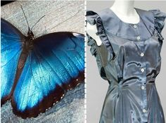 The dress's shimmery blue hue is achieved, without any dyes or pigments, by mimicking the Morpho butterfly wings.