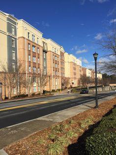 Campus Loop Rd View