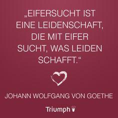 """""""Eifersucht ist eine Leidenschaft, die mit Eifer sucht, was Leiden schafft."""" Johann Wolfgang von Goethe"""