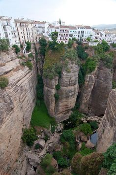 Ronda, Andalusia. Where the Garcia and Delgado Garcia line comes from. Our family owned an orange farm here until 1936 when it was taken from them in the war. One day I will visit.