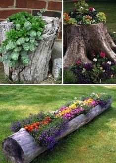 Garden Ideas and DIY Backyard Projects! Today we present you one collection of The BEST Garden Ideas and DIY Backyard Projects offers inspiring backyard ideas. These are amazing projects that you…More Tree Stump Planter, Log Planter, Planter Ideas, Tree Planters, Diy Planters, Flower Planters, Backyard Planters, Backyard Patio, Sloped Backyard