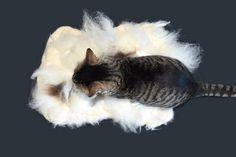 Cruelty Free Cat Bed Liner Felted Wool Fleece Pet Bed