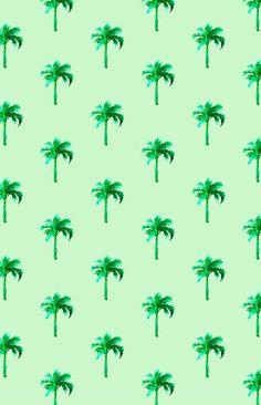 Palm tree pattern illustration - caleyostrander