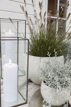 Ornamental grass, silver wreath and lanterns create a nice autumn atmosphere at the entrance hall www.no/ - Tina Carstensen - Dekoration Outdoor Pots, Outdoor Gardens, Outdoor Living, Rustic Gardens, White Gardens, Terrace Garden, Garden Pots, Garden Bar, Plant Design