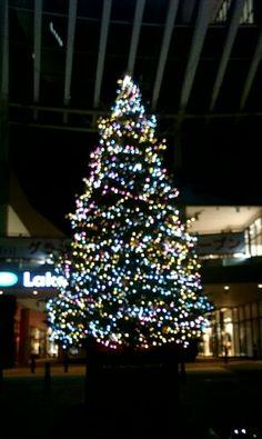 イオンレイクタウンアウトレット前のクリスマスツリー
