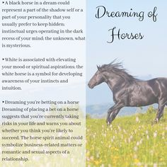 Horse Spirit Animal The horse spirit animal symbolizes personal drive, passion and appetite for freedom. Among all the spirit animals, it is one that shows a strong motivation that carries one through life. Horse Spirit Animal, Animal Spirit Guides, Your Spirit Animal, Black Horses, Dark Horse, Spiritual Meaning Of Dreams, Dream Interpretation Symbols, Totem Meaning, Animal Meanings