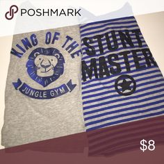 """Carter's Two Long Sleeve Tees """"King of the jungle gym"""" & """"Stunt Master"""". Worn a few times- no stains. 100% cotton. Price Firm Unless Bundled Carter's Shirts & Tops Tees - Long Sleeve"""