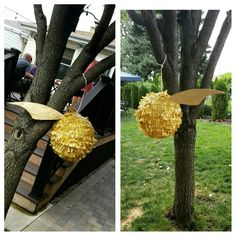 My first attempt at a pinata #harrypotter #pinata #birthday #birthdayparty #papermache #goldensnitch #snitch