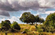 Hedeland: Landskab vest for Hedesletten