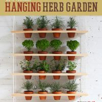 Herb gardens can be a fun and easy step into the world of gardening.  And spring has sprung, making many of us feeling the urge to garden.  Unfortunately, not everyone has an abundance of outdoor space to garden with.  Our solution to this problem? A space-saving, indoor-friendly, hanging herb garden.  To