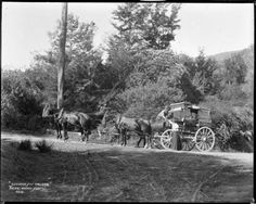Coach travelling to Nelson Johnstown Flood, Coach Travel, Christchurch New Zealand, Berenice Abbott, Porch And Balcony, Old West, Old Pictures, Vintage Photos, Travelling