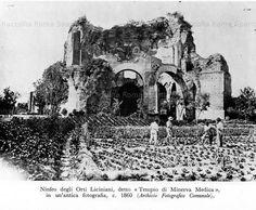 Ninfeo degli Orti Liciniani detto Tempio di Minerva Medica Anno: 1860