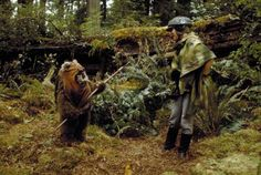 Princess Leia Organa and Wicket from Star Wars Episode 6 Return Of The Jedi Star Wars Episode 6, Star Wars Species, Star Wars Love, Funny Posters, Ewok, Star Wars Collection, Last Jedi, Princess Leia, Halloween Costumes