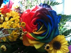 This is called a rainbow rose.  They are created by hand injecting each of the colors into the stem.
