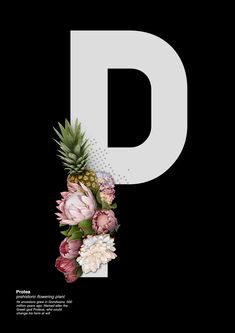 Tropical and textured Natural History Type Project by Lucrezia Invernizzi Tettoni, via Behance