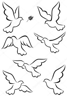 Stock vector of Flight Of Dove. Vector Art by suryadiranau from the collection iStock. Get affordable Vector Art at Thinkstock.For rock painting-Top right; cover rest of rock in multi-color dotsIllustration about Illustration o Simple Line Drawings, Easy Drawings, Paper Flower Backdrop, Paper Flowers, Dove Sketches, Dove Drawing, Dove Tattoo Design, Tattoo Designs, Top Paintings