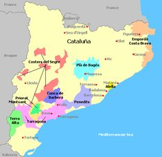 Catalonia's Denominación de Origen Wine Regions