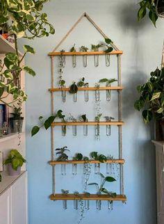 Indoor Garden, Indoor Plants, Indoor Plant Decor, Easy Garden, Herb Garden, Diy Home Decor, Room Decor, Plant Aesthetic, House Plants Decor
