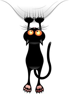 Funny Cat Shower Curtain by goatlady_GetYerGoat - CafePress Cute Cats, Funny Cats, Cat Clipart, Image Chat, Black Cat Art, Black Cats, Witch Cat, Cat Wallpaper, Cat Design