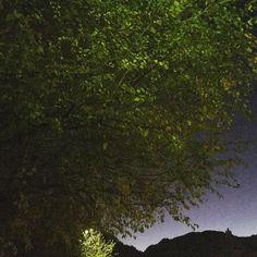 Sul limitar dellinverno-on the edge of winter #valcomelico #inverno #winter #santostefanodicadore #sky #italy #regioneveneto #provinciadibelluno #montagna #mountain #landscape #nature #dolomitiunesco #prendilasgaia #igersitalia #igersveneto #igersbelluno #voglioviverecosì #ig_italy #ig_veneto #ig_belluno #volgoitalia #volgoveneto #volgobelluno #landscape #solocosebelle #iovivoqui #godsbeauty #reflectiongram #lzp #creactiviews