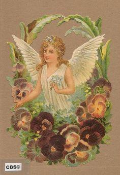 Witte engel in Violenkrans poezieplaatjes 5026