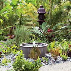 Soothing Bubbling Garden Fountain - This soothing bubbler is part of an entry garden for a home on the island of Oahu.  Its 30-inch-wide glazed and sealed stoneware bowl (find similar ones for around $100) is fitted with a small bubbler pump (from $20; thehomedepot.com).  Because the bubbler does little more than stir the water, there's no need for a reservoir beneath the bowl.