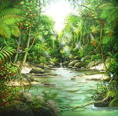 Ian Stephens Original Paintings - Rainforest Paintings