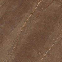 Pastilhart - Piso ou revestimento - MARMI ARMANI GOLD SG 120X120 CM