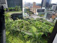 Park Royal Hotel verde Singapur