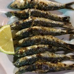 Another Foodie thing to do in Malaga is eating sardine espetos by the beach. Delicious!